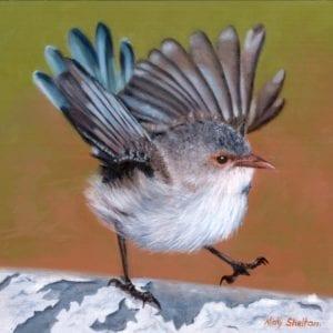 Happy Feet -Splendid FairyWren 30cm x 30cm -email