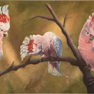 Major Mitchell Cockatoos painted in oils.